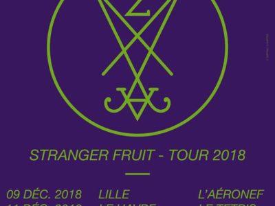 Zeal & Ardor en concert en France en 2018